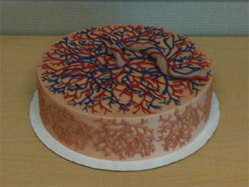 Placenta Cake 4